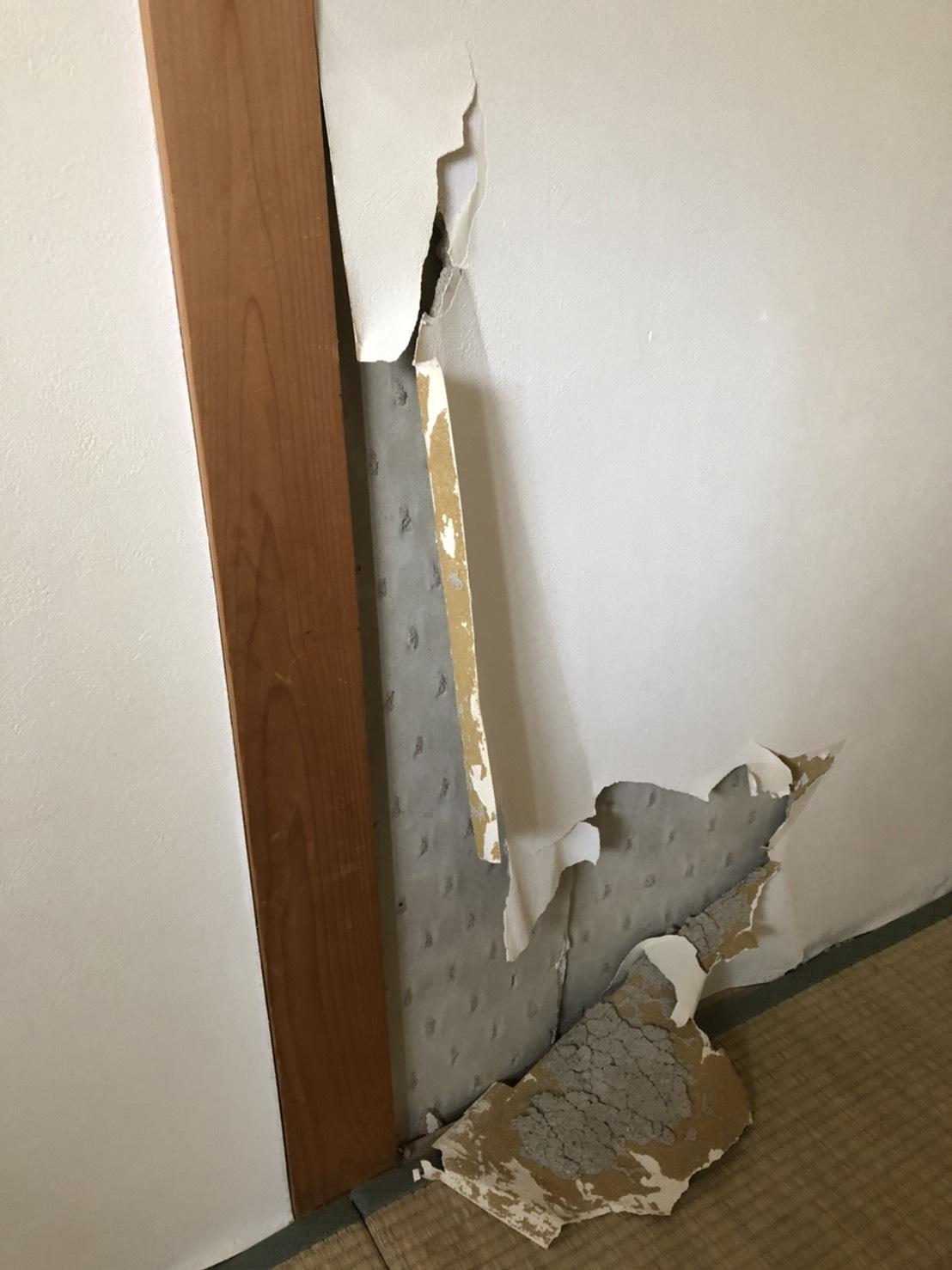 壁材のはがれ~内部結露~